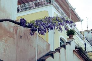 flowermediterraneanstairs