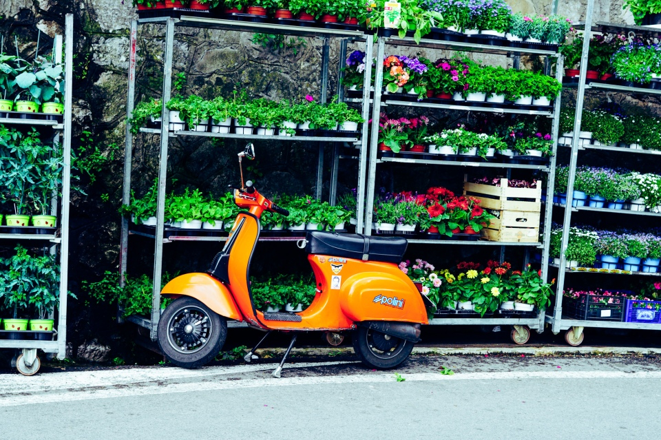 moped_italy_garden_scenery