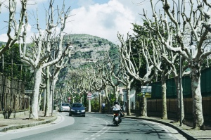 photo from the drive up to tuscany